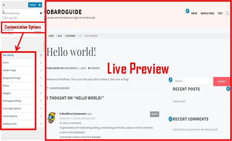 wordpress blog customization preview