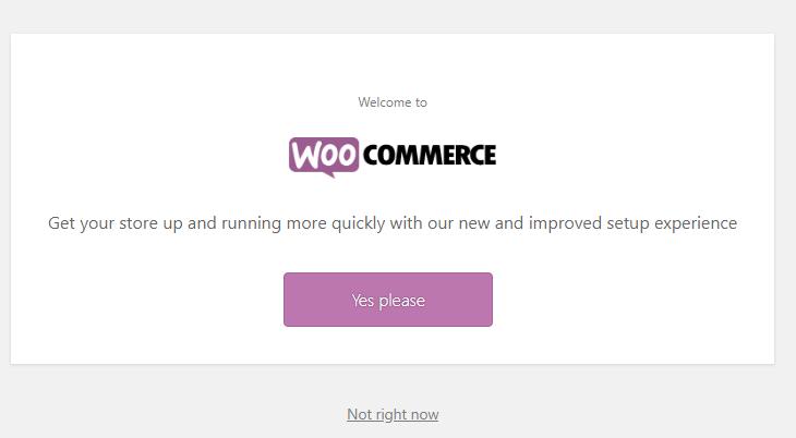 setting up ecommerce store